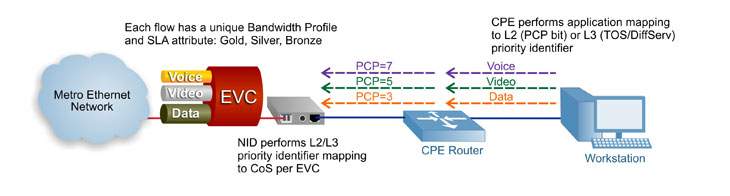 Carrier Ethernet Service Mapping