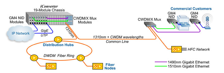 CWDM Cable HFC Access Network | Expand Fiber Capacity with