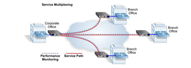 Ethernet Virtual Private Lines EVPL