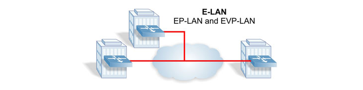 Carrier Ethernet 2.0 E-LAN